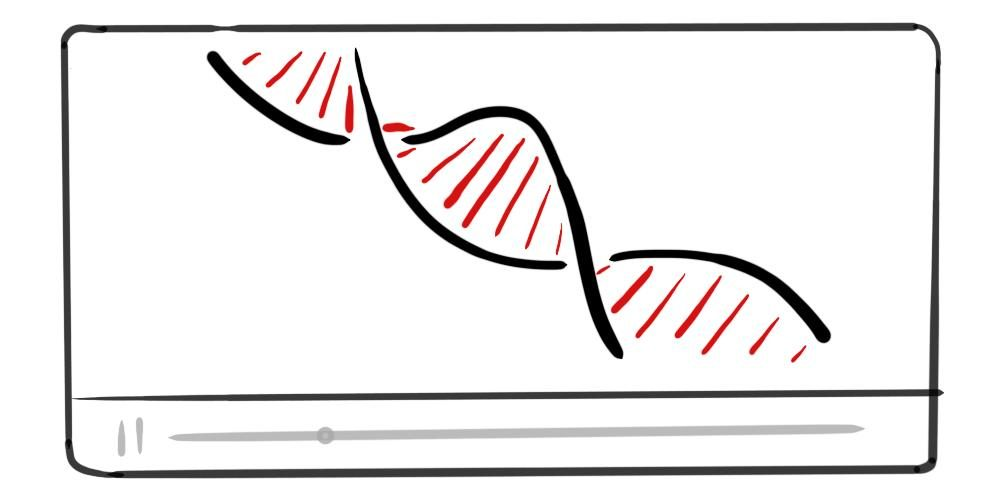 Epigenetics And The Influence Of Our Genes