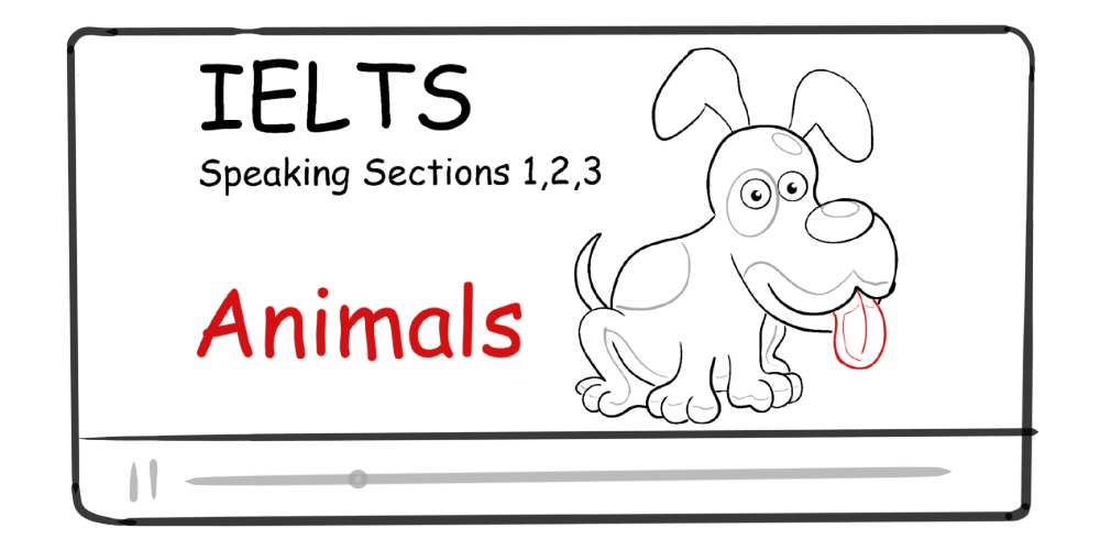 Animals (IELTS Speaking Section 1, 2, 3)